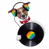 picture of jukebox  - dj dog holding a vinyl beside a blank banner - JPG