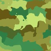 Camouflage Pattern