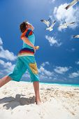 picture of flock seagulls  - Little boy and a flock of seagulls at beach - JPG