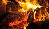 Burning Wood, Campfire Macro Photo