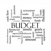 Budget Word Cloud Concept In Black And White