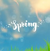 Spring Typographical Background. Sky, Sun and Clouds. Green Grass. Typographic Design.