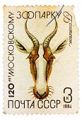 Postal Stamp Printed In Ussr Shows A Gazelle
