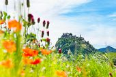 Hochosterwitz Castle And Poppy Flowers