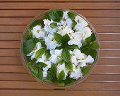 glass vase with gardenia flowers
