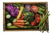 crate of fresh vegetables
