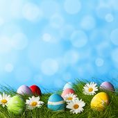 Easter Greeting Card with decorated Easter eggs in the grass and flowers