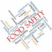 image of e coli  - Food Safety Word Cloud Concept angled with great terms such as hazards e coli cooking and more - JPG