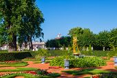 SAINT-PETERSBURG, RUSSIA - JULY 27: Peterhof palace lower park lawn on July 27, 2013 in Saint-Peters