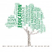 Conceptual green tree made of education text as wordcloud isolated on white background