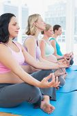 Content pregnant women meditating in yoga class in a fitness studio