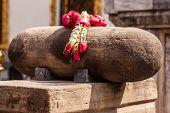 Buddhism Flowers