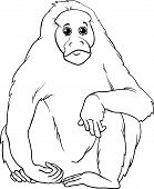 Uakari Animal Cartoon Coloring Page
