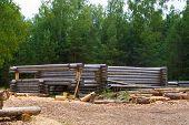 Making Wooden Pine Log House