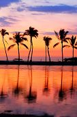 Paradise beach sunset with tropical palm trees. Summer travel holidays vacation getaway colorful con