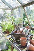 stock photo of workbench  - Gardening equipment on workbench in greenhouse - JPG