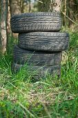 Old tires in the woods.