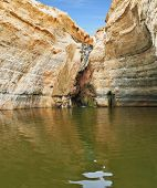 Unique canyon in the desert. Picturesque canyon Ein-Avdat in the Negev desert. Sandstone canyon wall