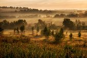 Landscape With Fog At The Morning.