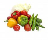 Vegetable Vegetarian