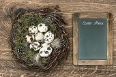 Birds Eggs In Nest On Wooden Background With Blackboard