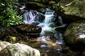 Peaceful Mountain Stream