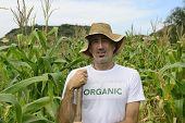 Organic farming: portrait of an eco farmer in corn plantation