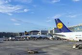 Lufthansa Aircrafts Standing At The Terminal 1