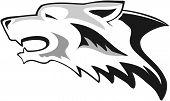 stock photo of white wolf  - Wolf head  - JPG