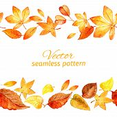 Seamless pattern of autumn leaves. two lanes. vector