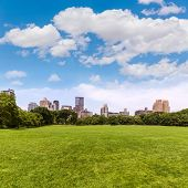 Central Park Sheep meadow Manhattan New York US