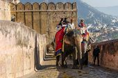 Jaipur, India - December 29, 2014: Tourists Enjoy Elephant Ride In The Amber Fort