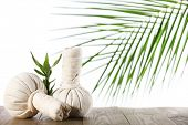 Spa compress balls with palm leaf isolated on white