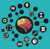 Human Resources Of Brain. Functions And Analytical Thinking