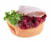 Herring with beets on rye toast isolated on white