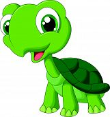 stock photo of turtle shell  - Vector illustration of Cute cartoon turtle isolated on white background - JPG