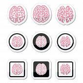 Human brain icons set - intelligence, creativity concept