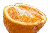 Orange Macro