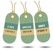 Set of three, green hanging stickers with text Last Chance, Special Offer, Hot Price