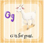 Illustration of a letter G is for goat