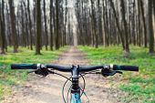 pic of descending  - Mountain biking down hill descending fast on bicycle - JPG