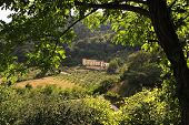 picture of apennines  - Italian countryside between Firenze and Bologna  - JPG