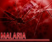picture of malaria parasite  - Abstract background digital collage concept illustration malaria mosquito disease - JPG