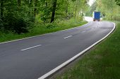 foto of tall grass  - The photo shows an asphalt road - JPG