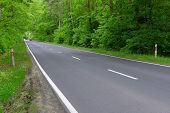 picture of tall grass  - The photo shows an asphalt road - JPG
