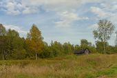 stock photo of backwoods  - Old village cottage in the woods near Roerich sources - JPG
