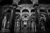 image of significant  - The Mosque - JPG