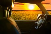 stock photo of riding-crop  - view from car window on field at sunset - JPG