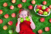 pic of healthy eating girl  - Child eating apple - JPG