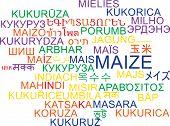 pic of maize  - Background concept wordcloud multilanguage international many language illustration of maize - JPG